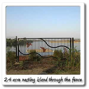 2.4 acre nesting island through the fence
